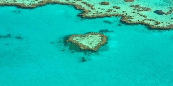 Le migliori offerte di lavoro a Cairns